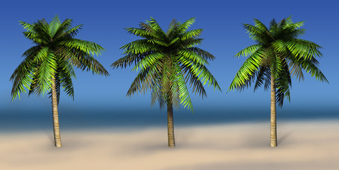 Palms on a sea background. 3D art-illustration.