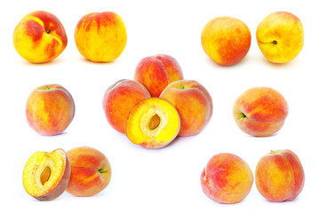 peach on white