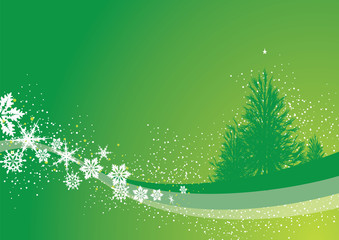 christmas pine background
