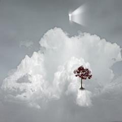 Obraz keyhole emits light in dreamlike scene - fototapety do salonu