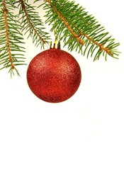 Red christmas ball hangs from pine branch