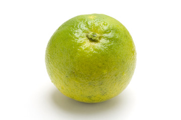 one isolated green orange in white background