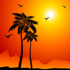 Tropical background with palm and birds