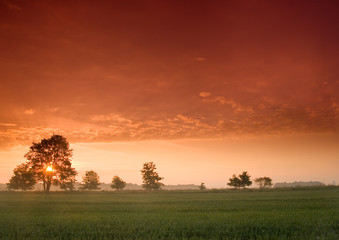 Piękny i spokojny wschód słońca. - fototapety na wymiar