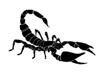 tattoo of the scorpio