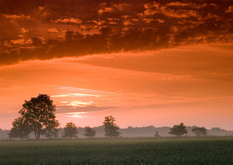 Piękny i spokojny wschód słońca.