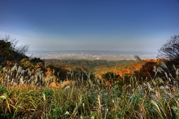 view from mountain