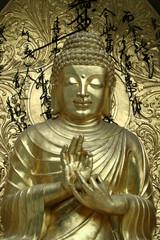 Buddha Blesses