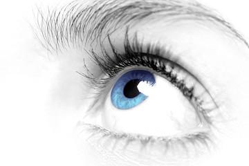 Females blue eye close up