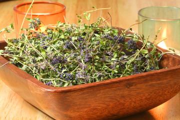 Thyme herb (Thymus serpyllum)
