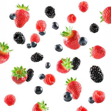 Fresh Berries explosion