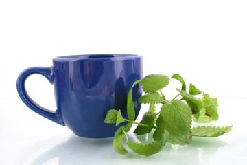 tea with herbs close-up