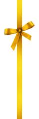 satin ribbon and bow - present