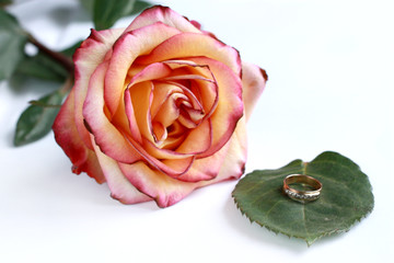 Ring on the green leaf near the rose