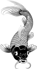Kohaku koi carp fish illustration