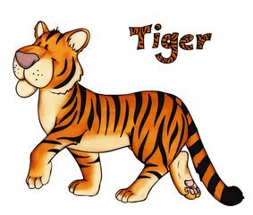 Tiger, Zoo, Raubkatze, Dschungel, Asien, Indien