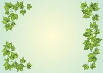 green foliage frame on light background