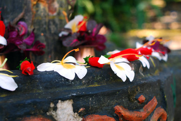 petals for worship of hindu