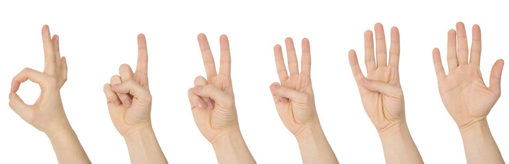 Counting hands with clipping paths