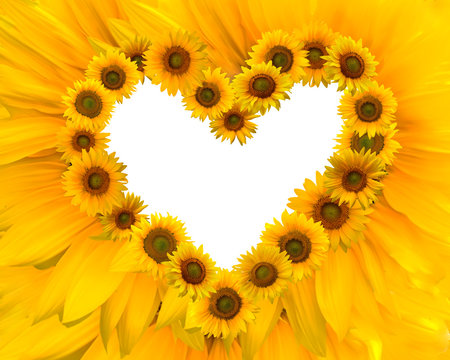 sunflowers heart frame