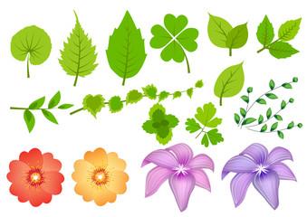 Floral design elements (part 2)