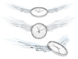 Pretty flying time (Time spending concept - clock with wings)