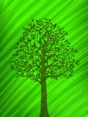 Vector green tree shadow over a big leaf