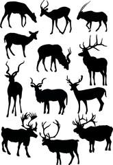 twelve horned animal silhouettes