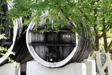 Winy barrel