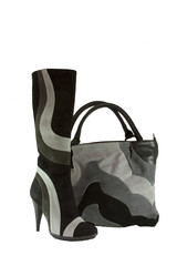 shoe and bag isolated