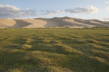Oasis at Khongoryn Els