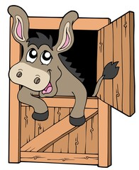 Cute donkey in stable