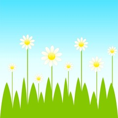 bright background with funny camomiles
