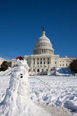 Wall Mural - Capitol Building, winter