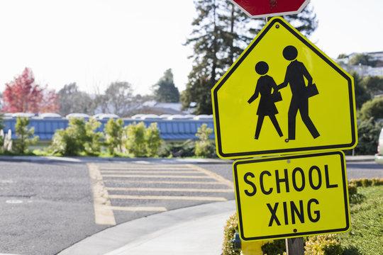 School Crosswalk