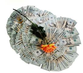 money & flower