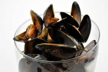 some fresh organic mussel in garlic butter