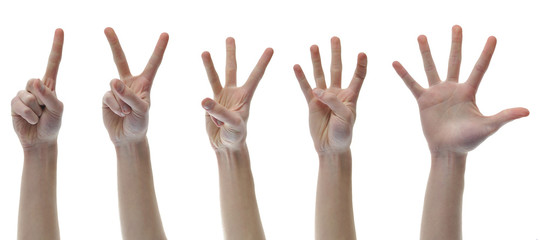 One Two Three Four Five Counting Finger Hands