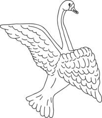 swan sketch, vector