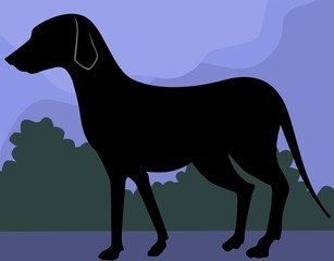 Illustration of silhouette of a dog
