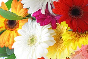 bouquet fleurs gerbera