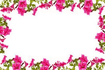 Tuinposter Azalea frame