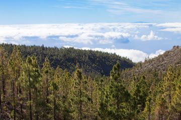 Wolkendecke - Teneriffa - Clouds - Tenerife