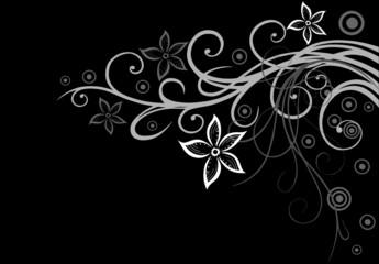 Blume, Blüte, Ranke, filigran, floral, ornamental, background