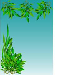 Green Leaf Cover