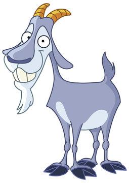 Smiley billy goat