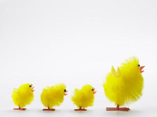Family Of Easter Chicks