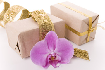 Boxes and orchid