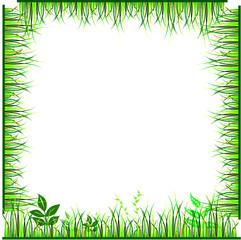 frame of green grass