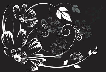Silhouette of Floral designs on black background